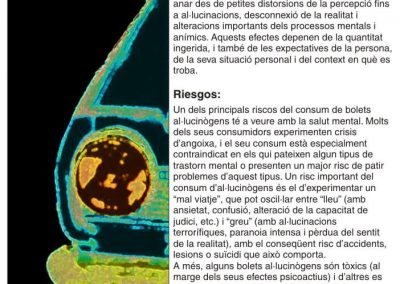 Punts 10 EXPO catala 6